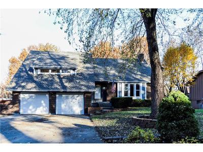 Blue Springs Single Family Home For Sale: 113 SE Alger Drive