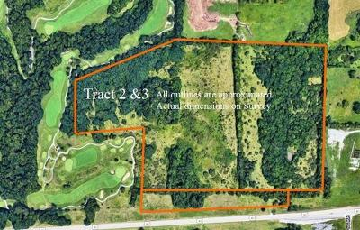 Blue Springs Residential Lots & Land For Sale: E 40 Highway
