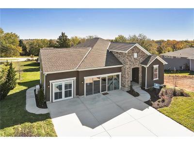 Olathe Single Family Home Model: 14313 S Houston Street