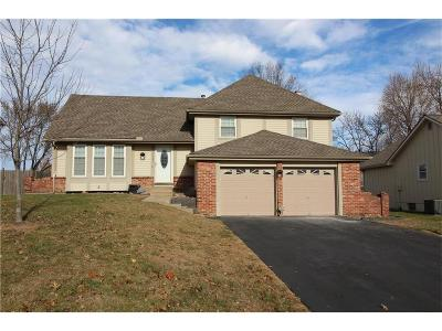 Lenexa Single Family Home For Sale: 14802 W 93rd Terrace