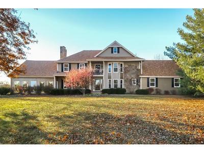 Overland Park Single Family Home For Sale: 17850 Goddard Street