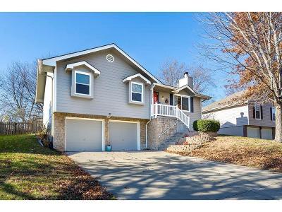 Lee's Summit Single Family Home For Sale: 1200 NE Hendrix Drive