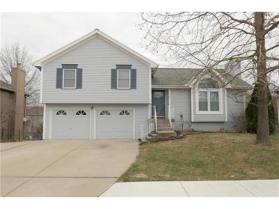 Kearney Single Family Home For Sale: 1705 Patricia Drive