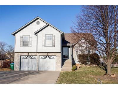 Raymore MO Single Family Home Contingent: $225,000