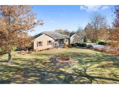 Pleasant Hill MO Single Family Home For Sale: $435,000