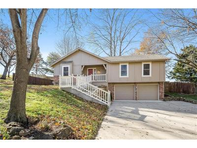 Shawnee Single Family Home For Sale: 5070 Mullen Road
