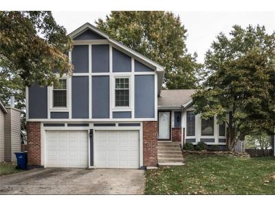 Olathe Single Family Home For Sale: 16116 W 125th Place