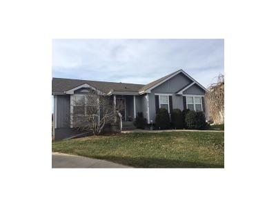 Grain Valley Single Family Home For Sale: 866 SW Meadowood Drive