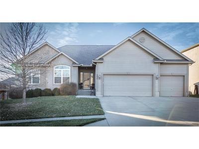 Kearney Single Family Home For Sale: 606 Crestridge Drive