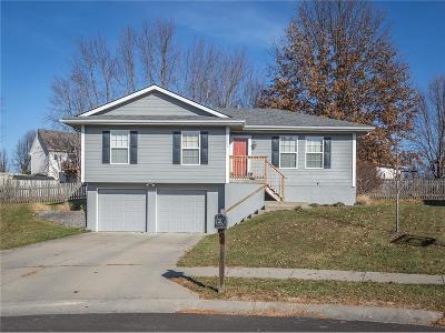 Kearney Single Family Home Show For Backups: 1213 Susan Street