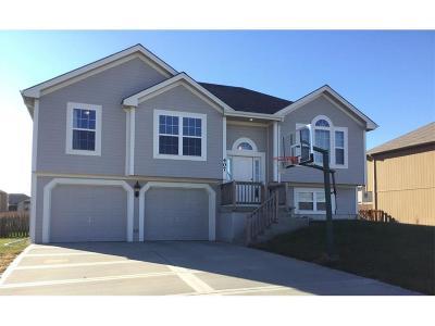 Smithville Single Family Home For Sale: 407 NE 192nd Terrace