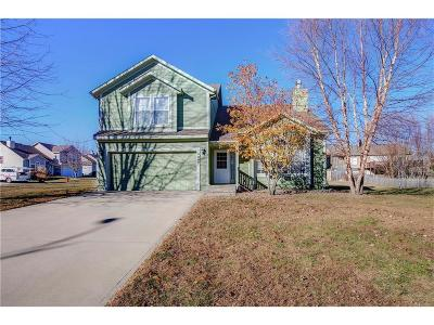 Spring Hill Single Family Home For Sale: 19990 219th Street