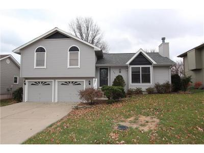 Smithville Single Family Home For Sale: 304 Mesa Drive