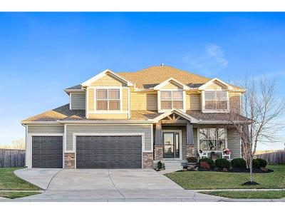 Olathe Single Family Home For Sale: 21533 W 176th Terrace