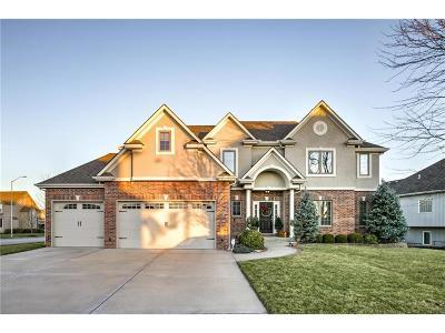 Kansas City Single Family Home For Sale: 8943 N Lewis Avenue