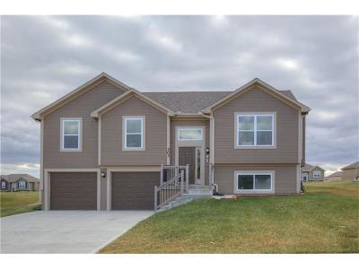 Smithville Single Family Home For Sale: 303 NE 193rd Street