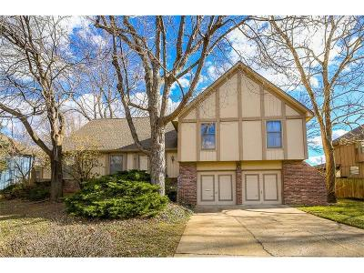 Overland Park Single Family Home For Sale: 9805 Craig Drive