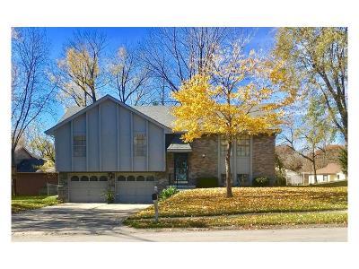Gladstone MO Single Family Home For Sale: $150,000