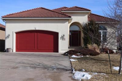 Lee's Summit Single Family Home For Sale: 4005 SW Kamryn Drive