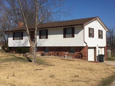 Knob Noster Single Family Home For Sale: 137 NE 1261 Road