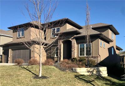 Overland Park Single Family Home For Sale: 16533 Cody Street