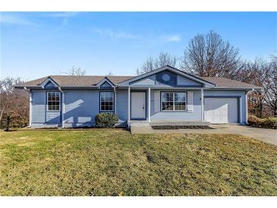 Kearney Single Family Home For Sale: 314 E 17th Street