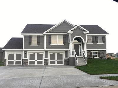 Kearney Single Family Home For Sale: 1035 E 14th Street