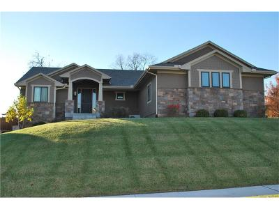 Lenexa Single Family Home For Sale: 9902 Woodstock Street