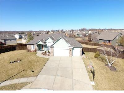 Raymore MO Single Family Home For Sale: $329,900