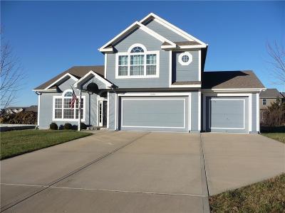 Spring Hill Single Family Home For Sale: 21650 Johnson Street