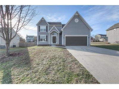 Spring Hill Single Family Home For Sale: 20127 W 219 Terrace