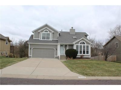 Overland Park Single Family Home For Sale: 15438 Foster Street