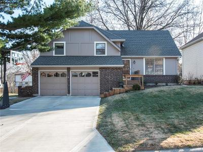 Olathe Single Family Home For Sale: 16601 W 142nd Place