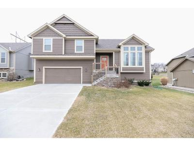 Olathe Single Family Home For Sale: 10520 S Millstone Drive