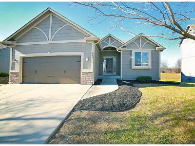 Raymore MO Single Family Home For Sale: $249,900