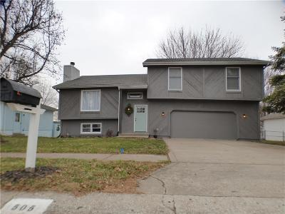 Excelsior Springs Single Family Home For Sale: 505 Birch Street