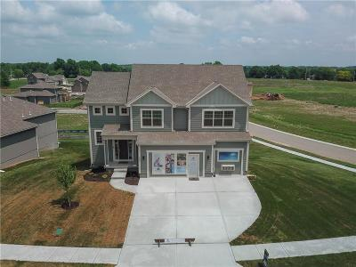 Lee's Summit MO Single Family Home Model: $345,600
