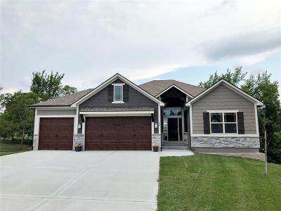 Lone Jack Single Family Home For Sale: 106 E Woodland Avenue
