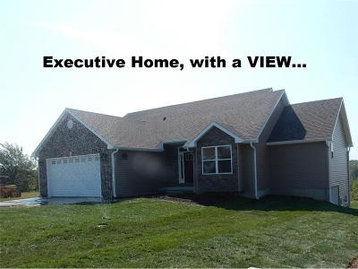 Knob Noster Single Family Home For Sale: 1701 6th Terrace