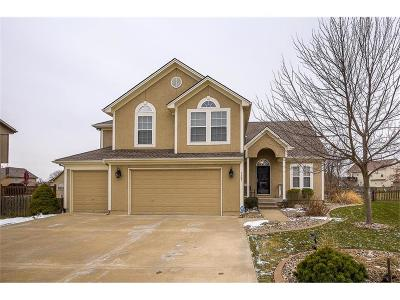 Raymore MO Single Family Home For Sale: $300,000