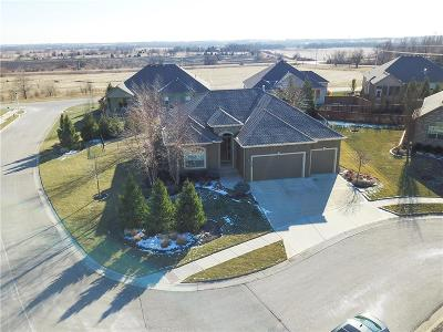 Overland Park Single Family Home Show For Backups: 13446 W 173 Terrace