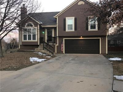 Shawnee Single Family Home For Sale: 5777 Meadow Height Drive