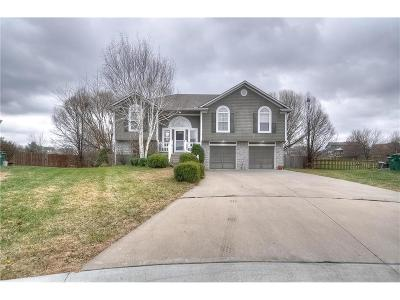 Raymore MO Single Family Home Show For Backups: $215,000