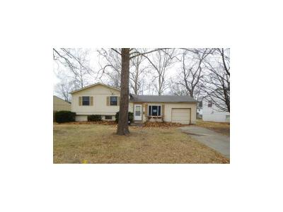 Overland Park Single Family Home For Sale: 9930 Benson Drive