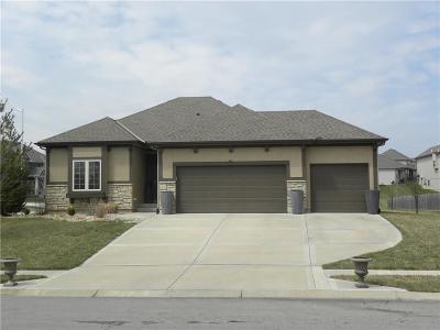 Kansas City Single Family Home For Sale: 8802 NE 100th Street