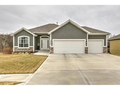 Kansas City Single Family Home For Sale: 7904 N Walrond Avenue