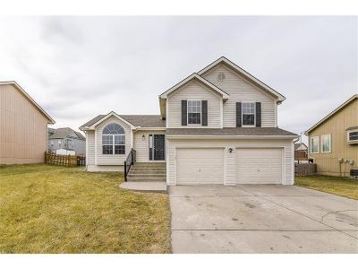 Kansas City Single Family Home For Sale: 11230 N Pennsylvania Avenue