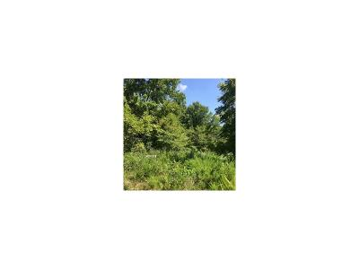Buchanan County Residential Lots & Land For Sale: Castile Tract 7 Drive