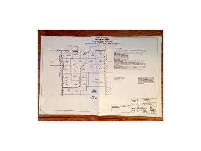 Clinton County Residential Lots & Land For Sale: Lot 3 NE Witt Road