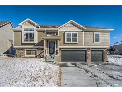 Kansas City Single Family Home For Sale: 7841 N Walrond Avenue